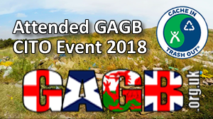 GAGB CITO Attended: 2018
